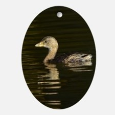 Pied-billed Grebe Oval Ornament