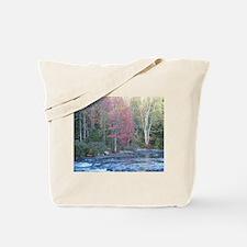 Adirondack Stream In The Fall Tote Bag