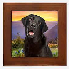 Labrador Meadow (button) Framed Tile