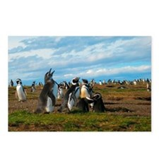 Penguins singing Postcards (Package of 8)