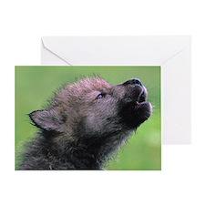 Wolf Cub Greeting Card