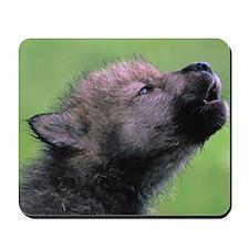 Wolf Cub Mousepad