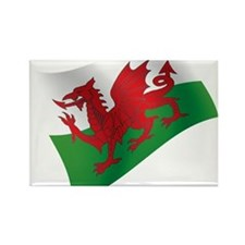 Welsh Flag Magnets