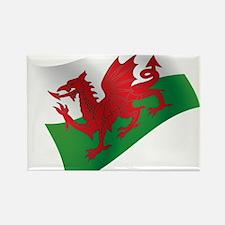 Welsh Flag Magnets