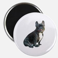 French Bulldog (blk)1 Magnet
