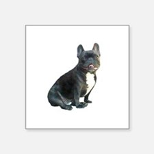 "French Bulldog (blk)1 Square Sticker 3"" x 3"""