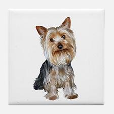 Silky Terrier (Gpol1) Tile Coaster