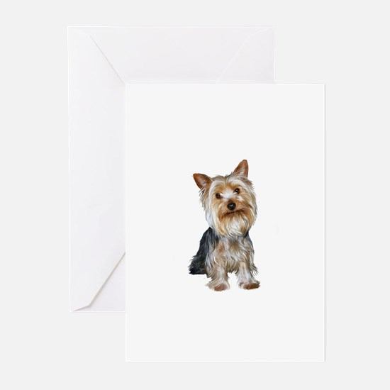 Silky Terrier (gpol1) Greeting Cards (Pk of 20)