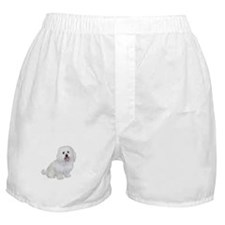 Havanese (W1) Boxer Shorts