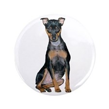 "Miniature Pinscher 2 3.5"" Button"