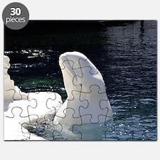 Beluga Whale Puzzle