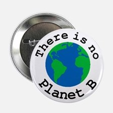 "There is no Planet B 2.25"" Button"