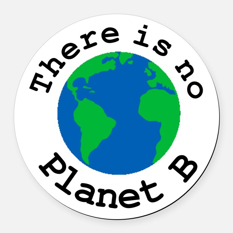 There is no Planet B Round Car Magnet