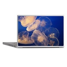 Jelly fish Laptop Skins