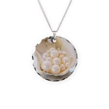 Studio shot of pearls in oys Necklace