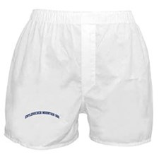 Entlebucher Mountain Dog (blu Boxer Shorts