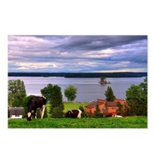 View of farm with cows gr Postcards (Package of 8)