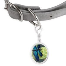 Blue Dragonfly Small Oval Pet Tag