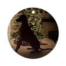 Great dane dog sitiing by Christmas Round Ornament