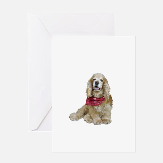 Cocker (buff-w/scarf) Greeting Card