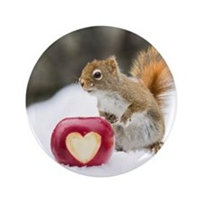 """Squirrel standing in snow with apple 3.5"""" Button"""