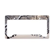 Apple trees in snow License Plate Holder