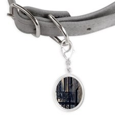 Fire Escape Stairs Against Buil Small Oval Pet Tag