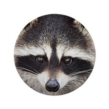 """Racoon 3.5"""" Button"""