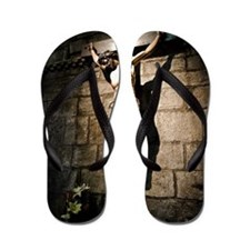 Christ in Jaca Cathedral Flip Flops