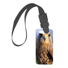 Common kestrel Luggage Tag