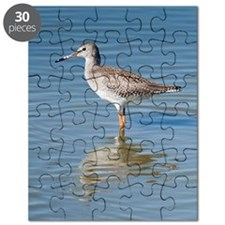 Common Redshank (Tringa totanus) Puzzle