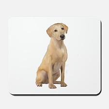 Labrador (Y3) Mousepad