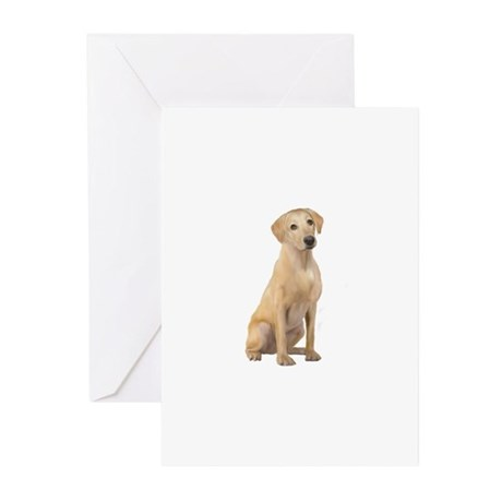 Labrador (Y3) Greeting Cards (Pk of 10)