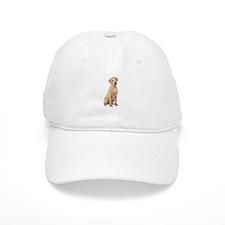 Labrador (Y3) Baseball Cap