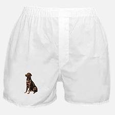 Chocolate Lab (#1) Boxer Shorts