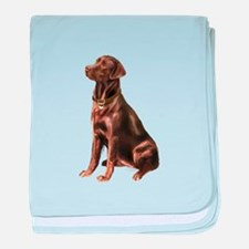 Chocolate Lab (#1) baby blanket