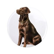 "Chocolate Lab (#1) 3.5"" Button"