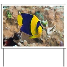 Tropical fish Bicolor Angelfish on coral Yard Sign