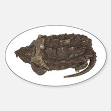Snapping Turtle Oval Decal