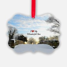 I Love My Wonderful Son Picture Ornament