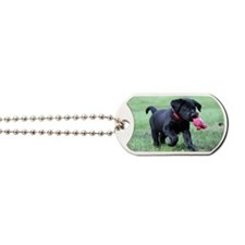 Baby Gage Dog Tags