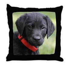 Eromit Labs- Baby Carbon Throw Pillow