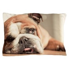 Bulldog lies exhausted on floor Pillow Case