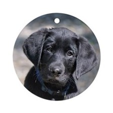 Baby Victor Round Ornament