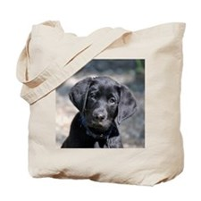 Baby Victor Tote Bag