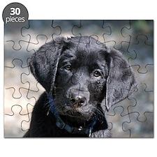 Baby Victor Puzzle