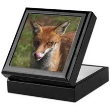 Portrait of red fox in felsted Keepsake Box