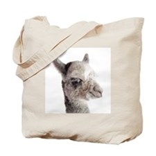 Alpaca baby studio headshot Tote Bag