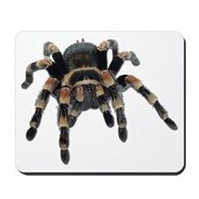 Tarantula Photo Mousepad