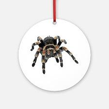 Tarantula Photo Ornament (Round)